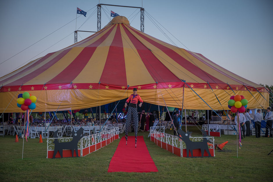 Black Dog Ball 2016 held in a circus tent at Paradise Lagoons, on the Lawn.